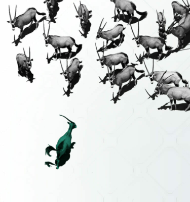 Spryker antilope antelope